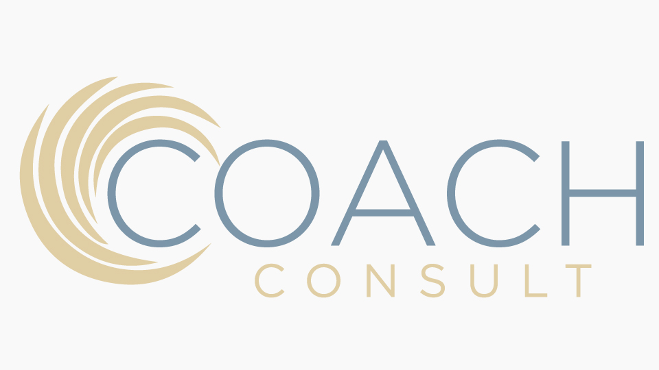 Strategy Design and Execution Consulting